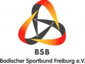 logo_bsb_fr